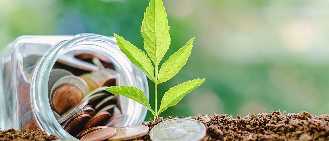 Investovanie peňazí v roku 2019 – kompletný manuál pre začiatočníkov